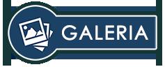 przycisk galerii